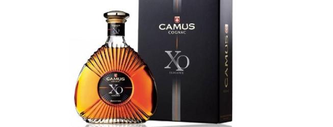 Alkohol wieczoru #110: Camus XO