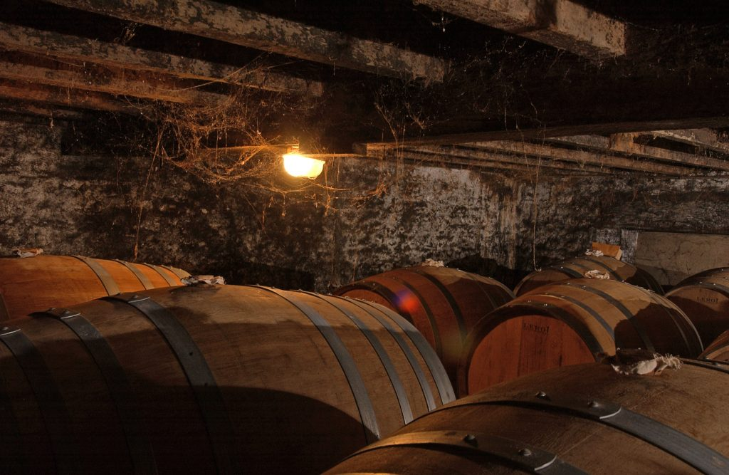 dans-les-chais-in-the-cellars-9