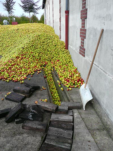 CALVADOS ROGER GROULT APPLES